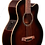Thumbnail: AEB10EDVS Ibanez Accoustic Bass