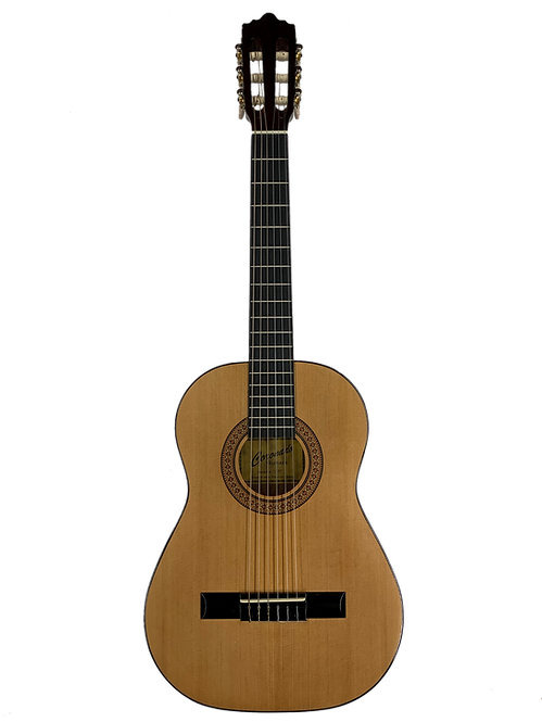 Coronado Coronado Classical Guitars 1/2, 3/4, Full Size, A/E Available
