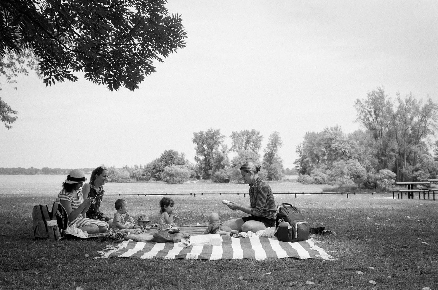 picnic-28.jpg