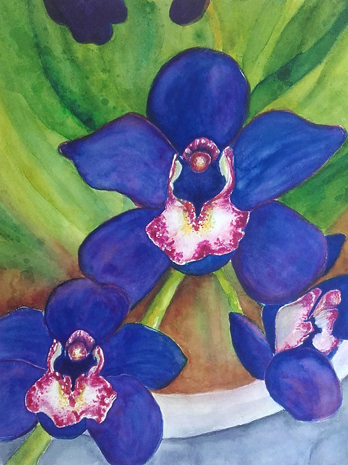 Shadow Orchids