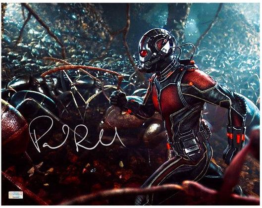 Paul Rudd Ant Man | Celebrity Authentics