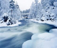frozen winter river.jpg