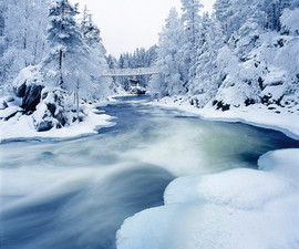 frozen winter river.jpg