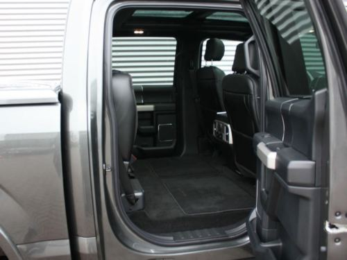 Ford F150 Gris 10