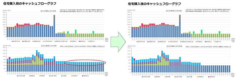 住宅購入グラフ_edited.jpg