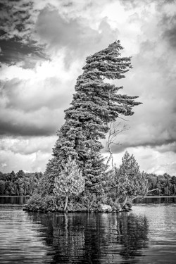 Tree Island, Almaguin Highlands, Ont