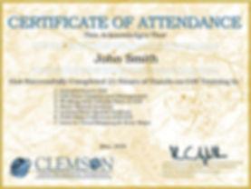 Certificateofattendance_Spring2020.jpg