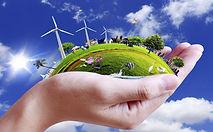 environment-1.jpg