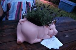 Powell Pig Roast 2020