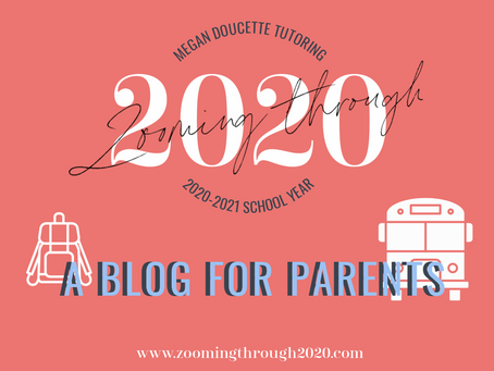 Welcome to Zooming Through 2020: A Blog for Parents