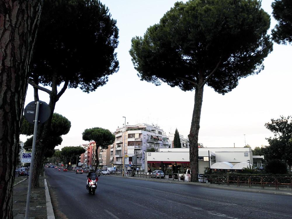 Kuva Roomasta IMBA:n salin lähistöltä