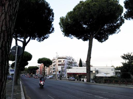 Kaikki tiet vievät Muay Boranin luo - treeniä Roomassa