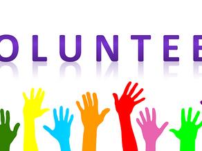Reasons to Volunteer in Your Community