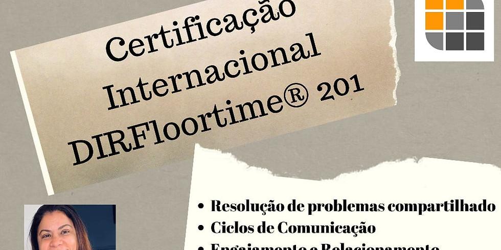 DIR 201: Promovendo Capacidades de Desenvolvimento Emocional Funcional Básico (1)
