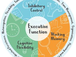 Desenvolvimento da Cognição Social no TEA : Funções Executivas (parte 3)