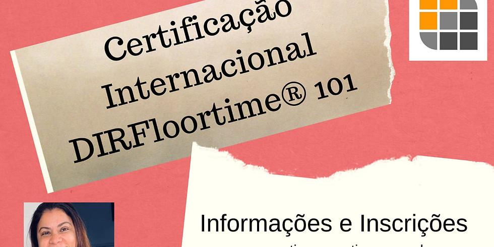 DIR 101: Introdução ao DIR ® e DIRFloortime®