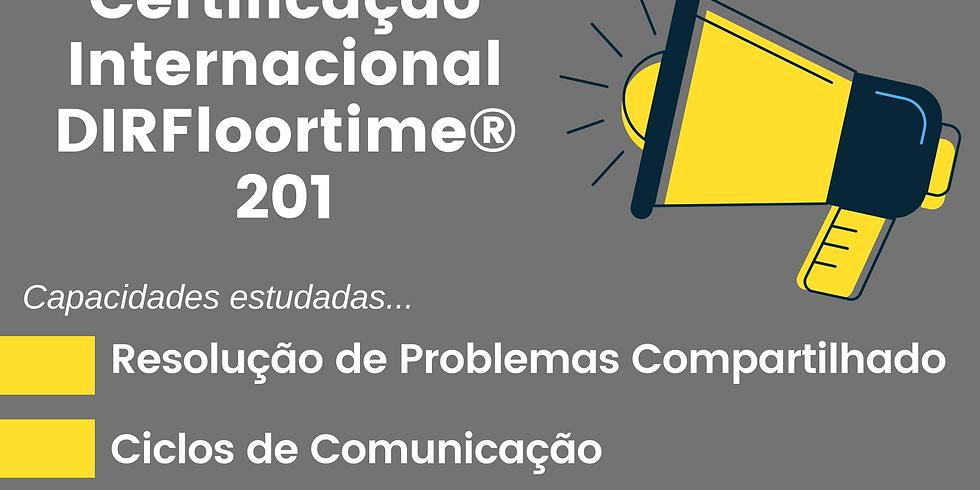 DIR 201: Promovendo Capacidades de Desenvolvimento Emocional Funcional Básico