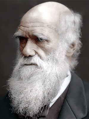 Darwinismo Sociale