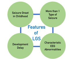 Features of LGS