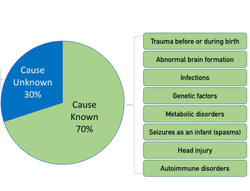 Causes of LGS