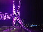 sky dance bridge.jpg