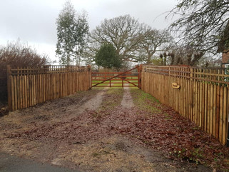 Pale fencing on driveway