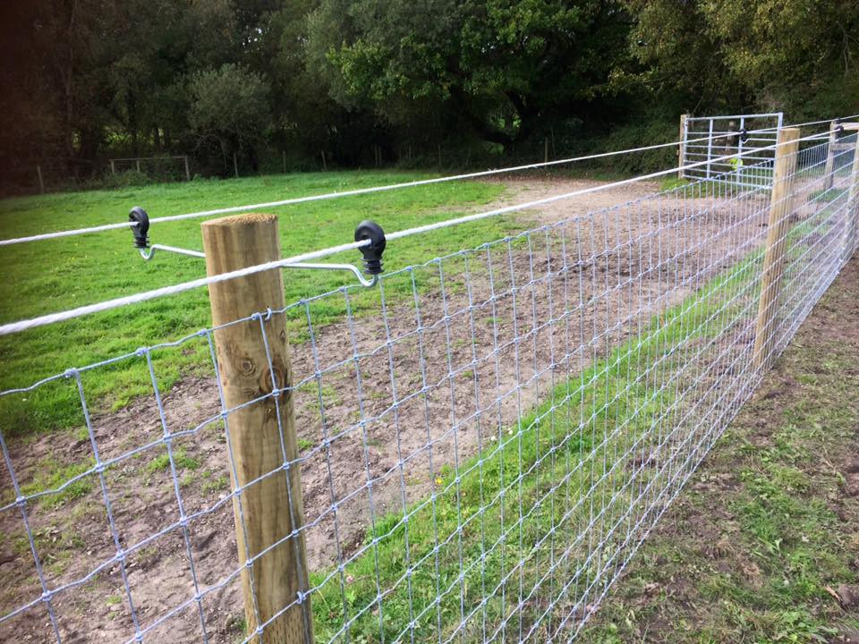 Horse netting with stand off electric fencing