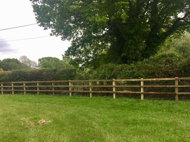 square post and rail with horse netting