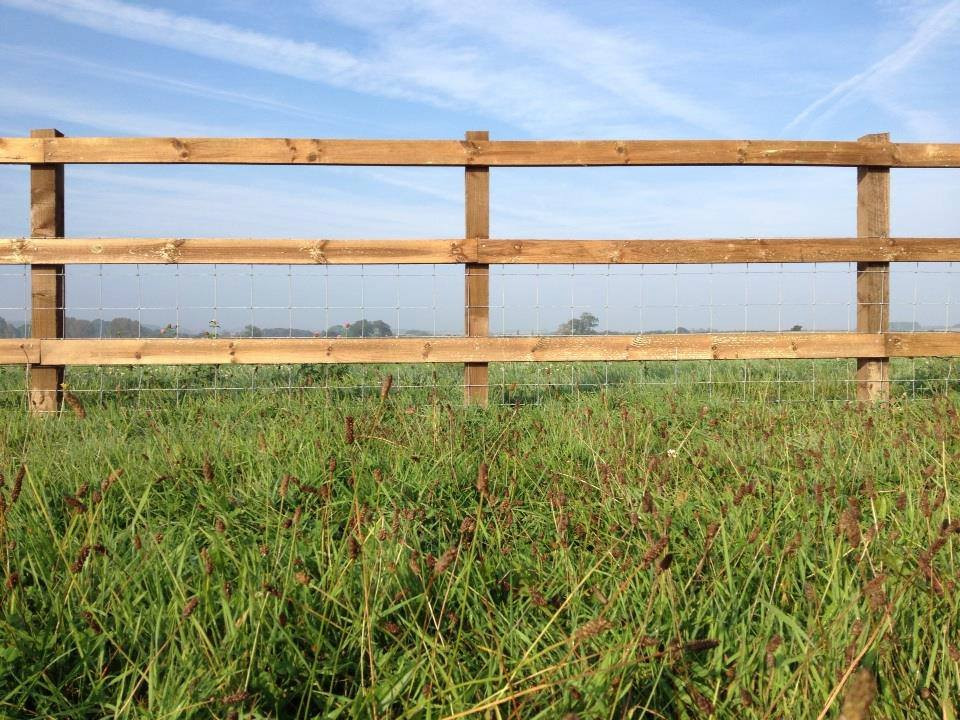 Square post and rail stocknetting