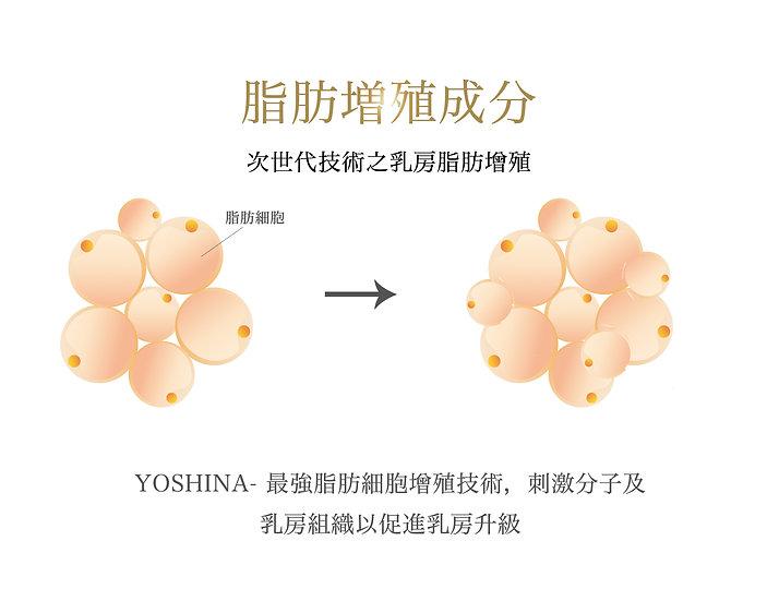 Yoshina 豐胸之神