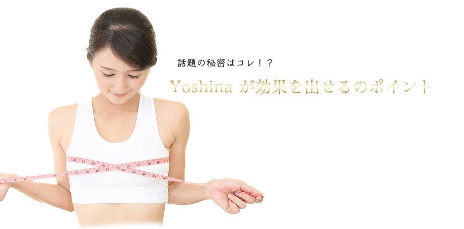 Yb10b.jpg