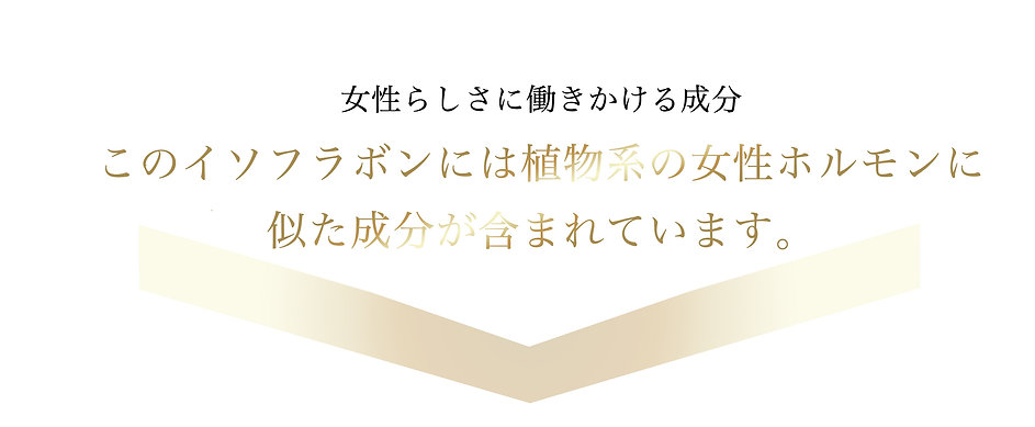 Ych3.jpg