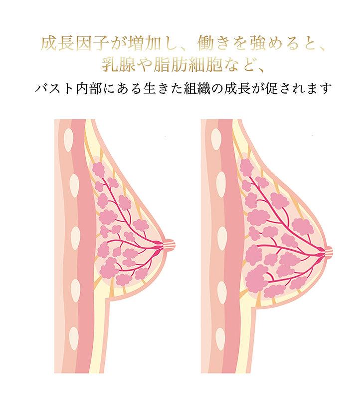 Yb9.jpg