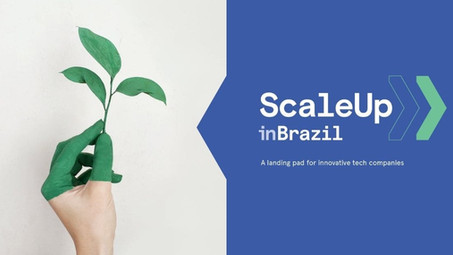 Scaleups for a Sustainable Developed future