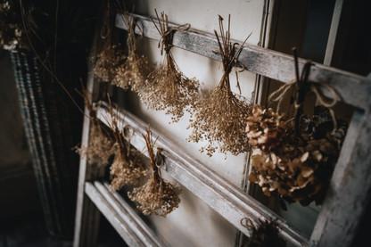Finches Wedding-7.jpg