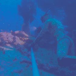 Gamme Freediving