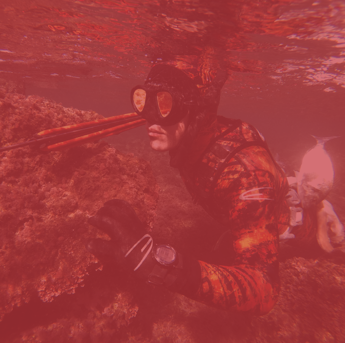 Gamme Spearfishing