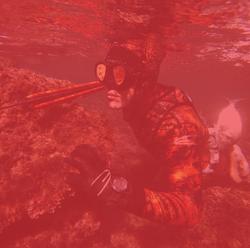 Gamme Spearfishing