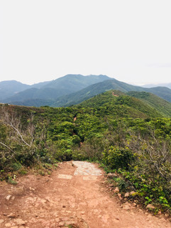 Dragons Back Hike in Hong Kong
