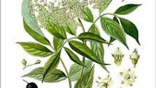 Eau florale de Sureau Noir 250 ml