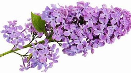 Eau florale de Lilas 500 ml