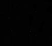 Logo_Musikhaus_Hirsiger_schwarz_neu_2021