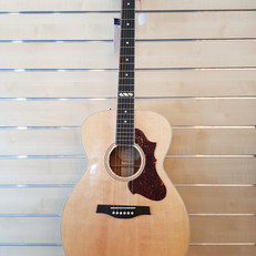 Godin Gitarre