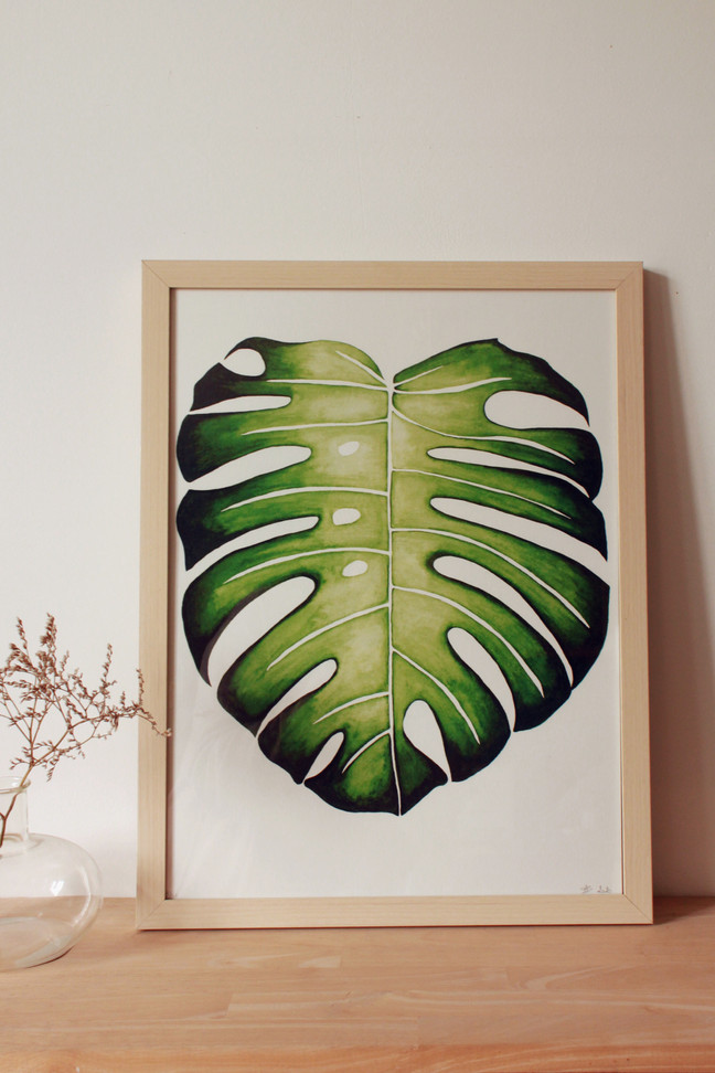 Monstera (encadrée)