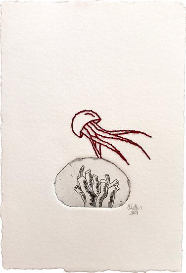 Méduse et corail