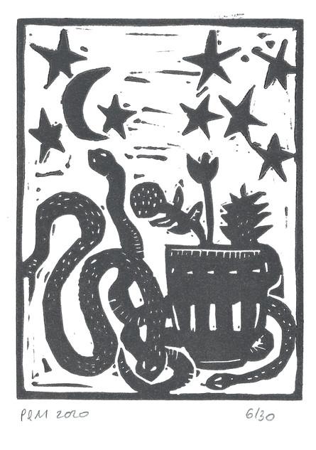 Serpent céleste