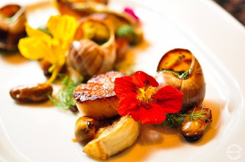 diver scallop & snails