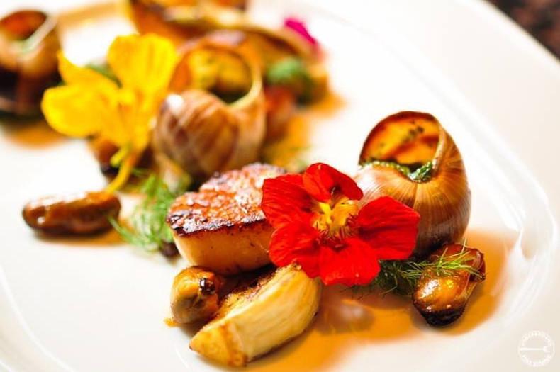 diver scallop & snails