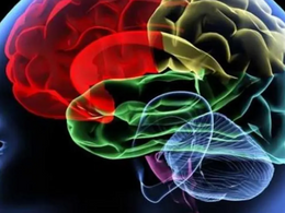 Israeli Startup Developing Remotely Operated Needle for Brain Surgery