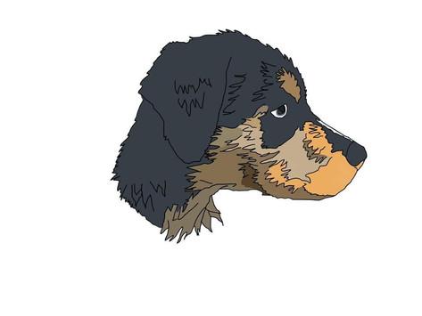 My Dog Ruined My Life